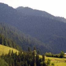 Munții Bistriței