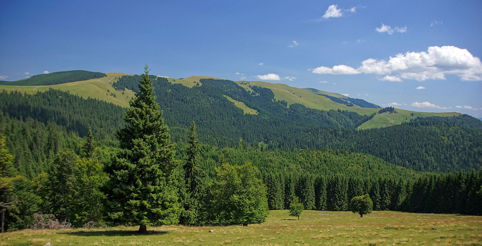 Góry Suhard – Rumunia