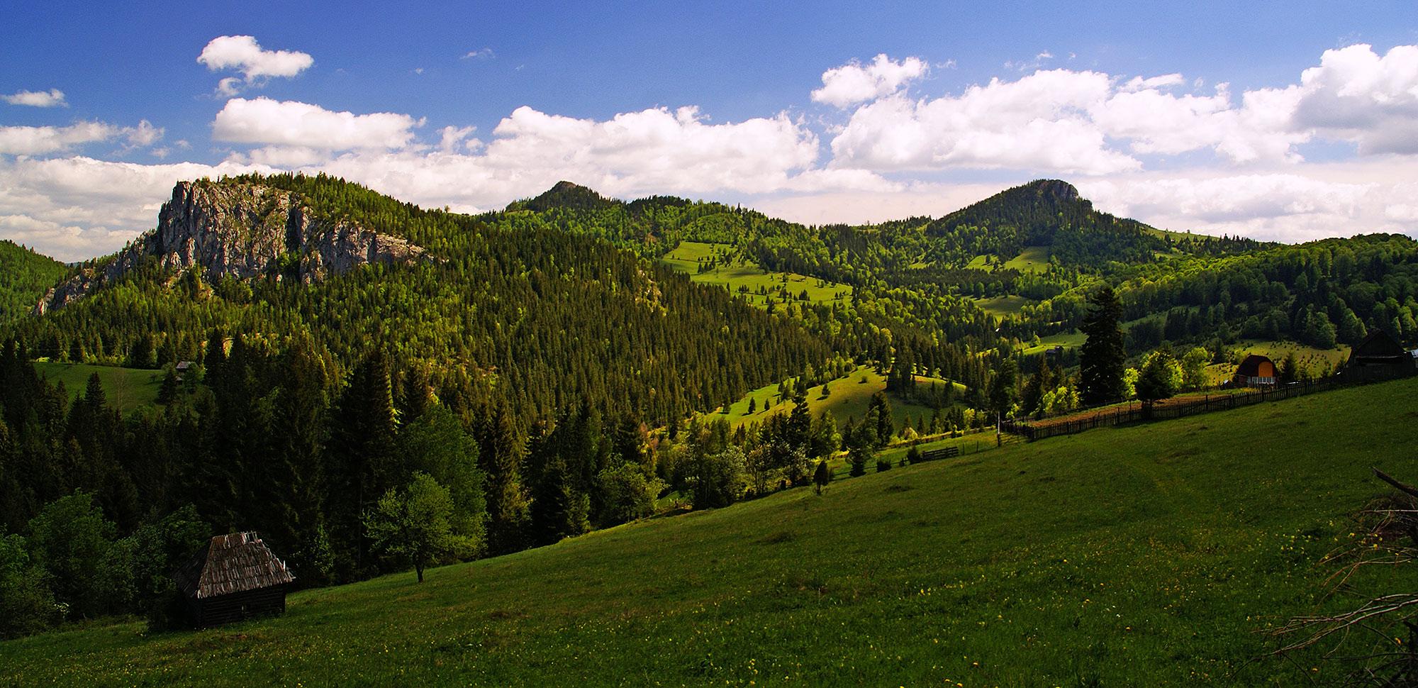 Karpaty Rumuńskie: GÓRY TARCĂU