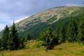 Karpaty Ukraińskie: Sywula najwyższy szczyt Gorganów