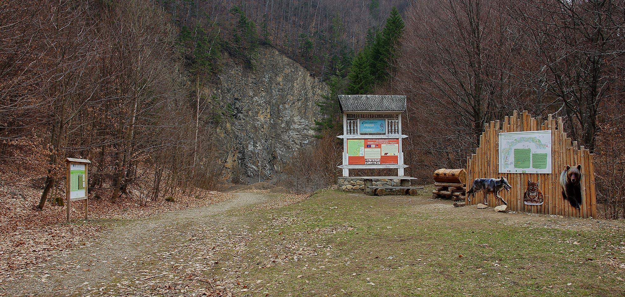 Wąwóz (Cheile) Tișiței – Góry Vrancei