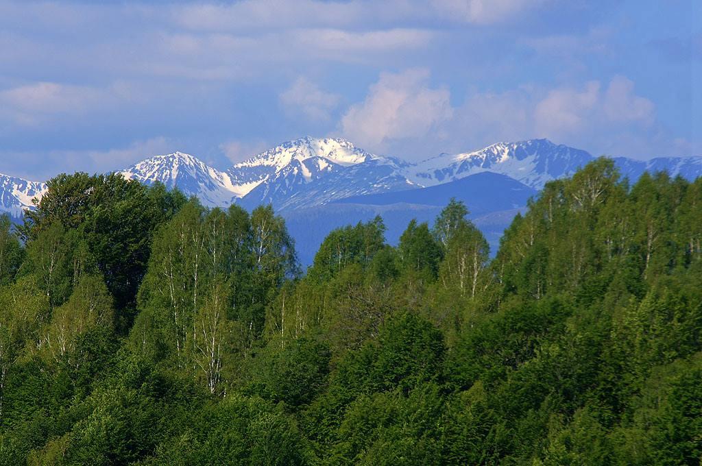 Karpaty Rumuńskie: Park Narodowy Defileul Jiului