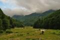 Karpaty Rumuńskie: Park Narodowy Domogled-Valea Cernei