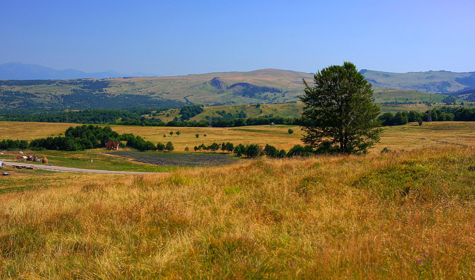 Karpaty Rumuńskie: Przełęcz Gutâi – Góry Gutâi