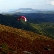 Munții Gutâi