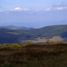 Góry Gutâi