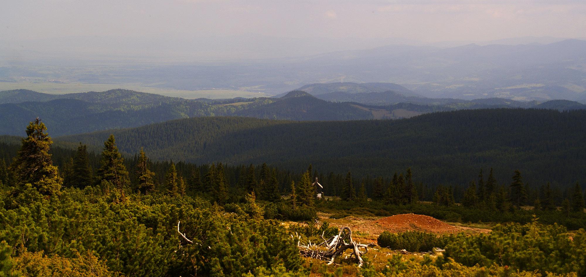 Karpaty Rumuńskie: Góry Gurghiu