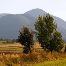 Munţii Bodoc