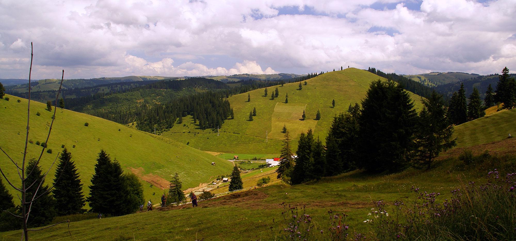 Karpaty Rumuńskie: Góry Ciuc