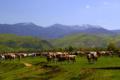 Góry Zachodniorumuńskie – Góry Apuseni