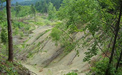 Osuwisko na Girowej (Beskid Śląski – Czechy)
