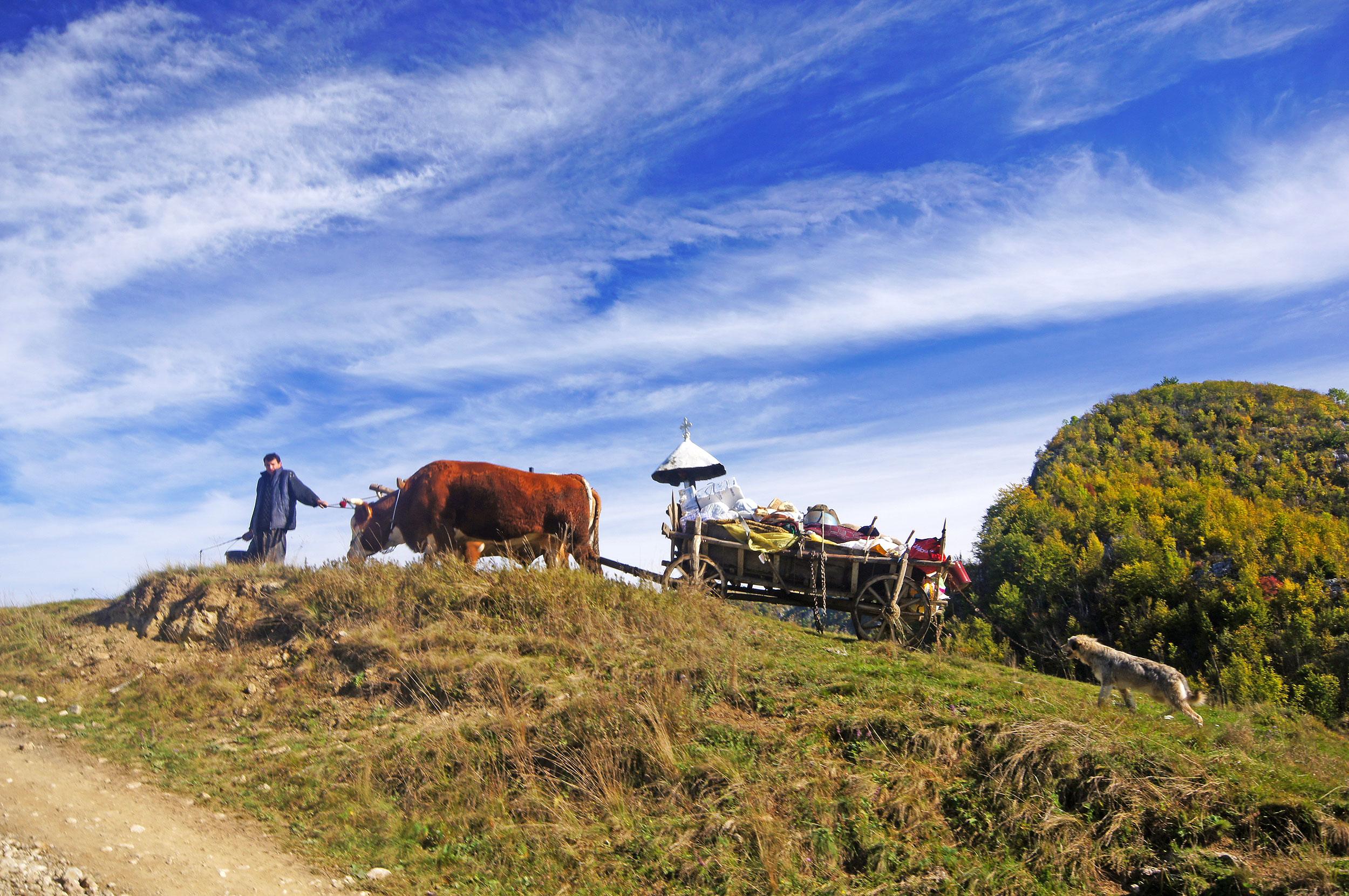 Rumunia: Góry Trascău (Munţii Trascăului)