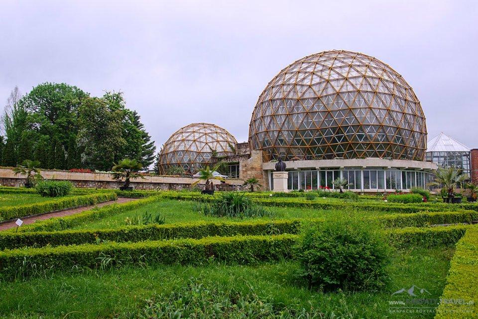 Ogród Botanicznego Vasile Fati w Jibou