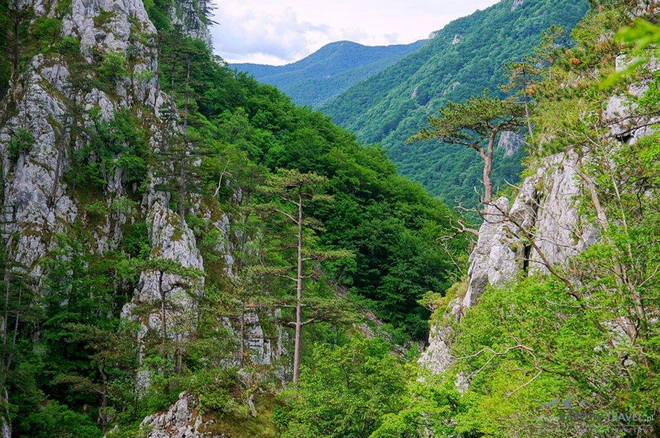 Karpaty Rumuńskie: Góry Mehedinţi (Munţii Mehedinţi)