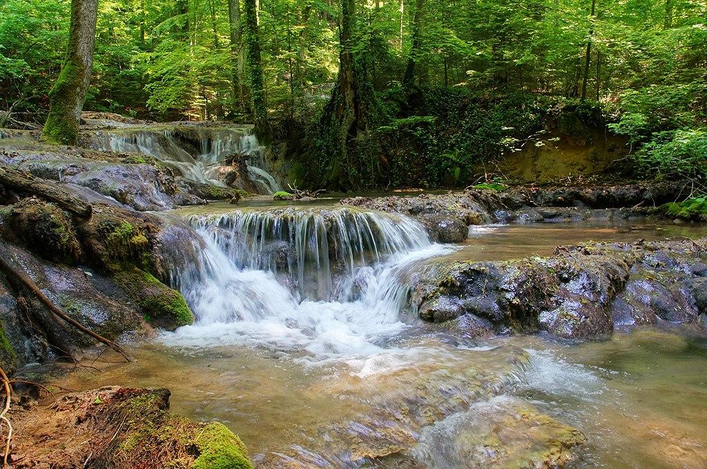 Karpaty Rumuńskie: Park Narodowy Cheile Nerei-Beuşniţa