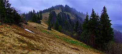 Karpaty Ukraińskie: Park Narodowy Skolivs'ki Beskidy (Сколівські Бескиди)