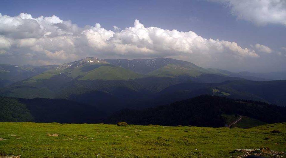 Góry Ţarcu (Munţii Ţarcu)